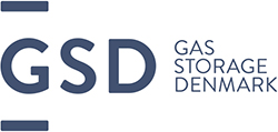 GSD_lille_logo_blue_250px